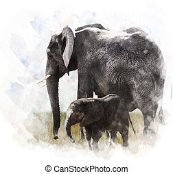 Watercolor Image Of Elephants - Watercolor Digital Painting...