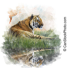 Watercolor Image Of Tiger - Watercolor Digital Painting Of...