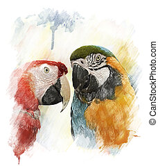 Watercolor Image Of Parrots - Watercolor Digital Painting Of...