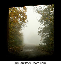 Tunnel - trees in the fog on a field in the morning
