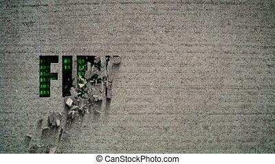 Firewall Crumbling Wall - Crumbling wall revealing a green...