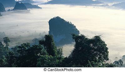 Montaña, niebla, pico