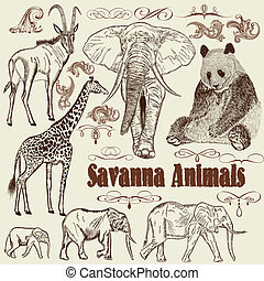 Collection of vector animals Afric - Vector set of hand...