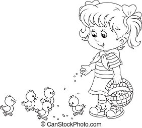 Girl feeding chicks - Little girl feeds a brood of small...