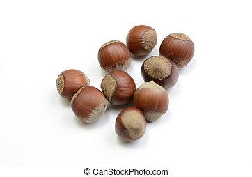 nuts - hazelnuts