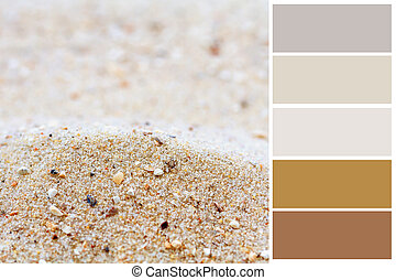 Sand background color palette with complimentary swatches