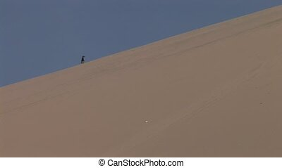 Person in Dunes of a desert