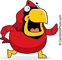 Cartoon Cardinal Walking - A happy cartoon red cardinal...