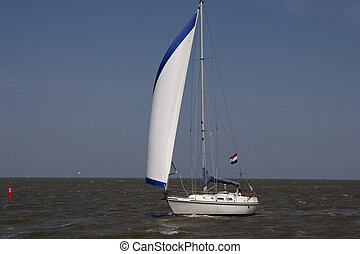 sailboat - saiboat on open water