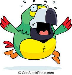 Cartoon Parrot Panic