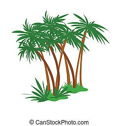 palm grove - vector illustration palm grove
