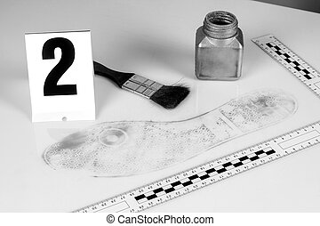 Disclosure of forensic evidence. - Revealing and preserving...