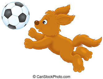 Pup playing a ball - Funny brown puppy playing a football,...