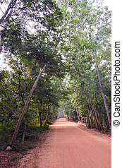 empty red gravel road in Auroville, India