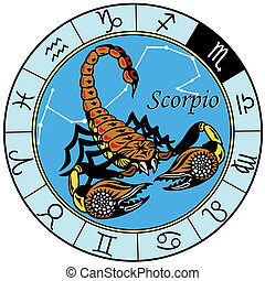 scorpion zodiac - scorpion or scorpio astrological zodiac...