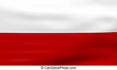 Waving Poland Flag, ready for seamless loop.