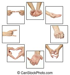 Hands - Collage - hands that indicate something on a white...