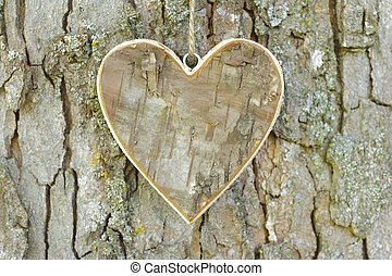 wooden heart on tree - carved wooden heart on bark tree