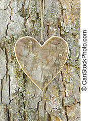 heart on tree - carved wooden heart on tree bark