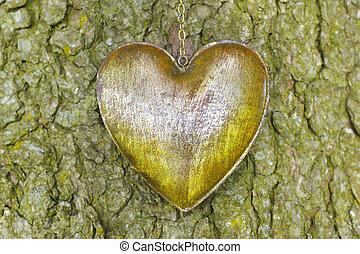 iron heart on bark tree