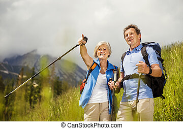 Senior couple hiking - Senior tourist couple hiking at the...