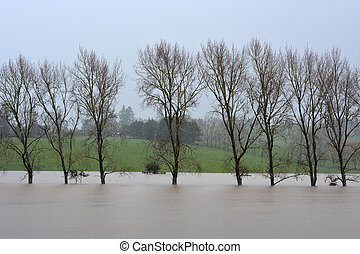 Natural disaster - Flood - Flooded fields in Northland, New...