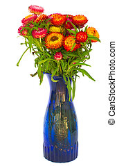 Bouquet of Everlasting flowers bouquet in vase isolated on...