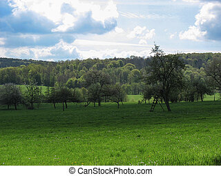 Landscape in the Vosges in France