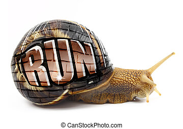 """Snail with """"Run"""" text written on its shell isolated"""