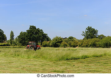 Mowing the grass in the fields landscape