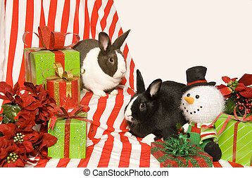 Bunnies and Christmas Gifts - Two rabbits sit with a toy...