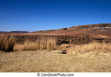 Harsh Dry Winter Landscape in Orange Free State, South...