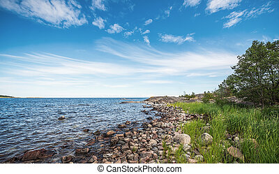 Shoreline in the baltic sea during summer - Shoreline with...