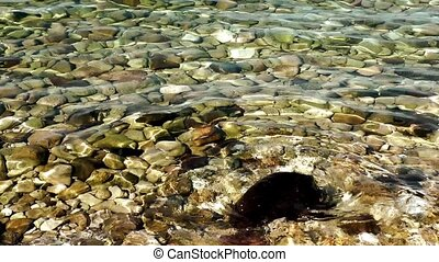 Stones under the Sea Water