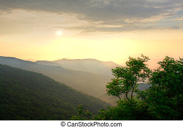 Sunset over the forest - Sunset in the mountains with thick...