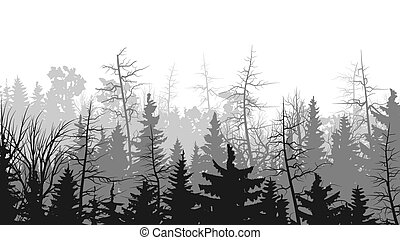 Illustrations of coniferous wood. - Vector horizontal...