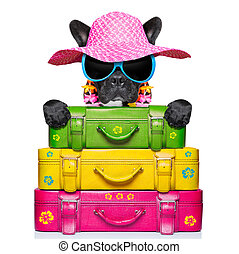 holliday luggage dog - dog on holidays with umbrella and lot...