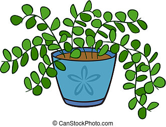 Houseplant - vector art of a houseplant with round leaves on...