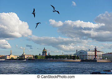 St. Petersburg. View on Vasilevsky Island and seagulls