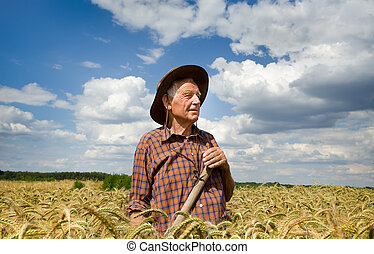Worker in barley field - Conceived old man farmer resting in...