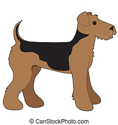 Airedale Terrier - A cartoon illustration of an Airedale...