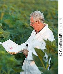 Agronomist in field - Old agronomist in white coat looking...