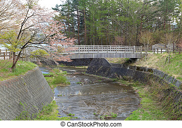 bridge and rural in Saiko Lake, Japan