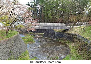 bridge and rural in Saiko Lake, Japan