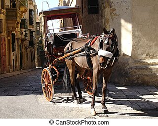 horse-drawn carriage - Old horse-drawn carriage taken in...