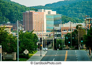 Carilion Roanoke Memorial Hospital