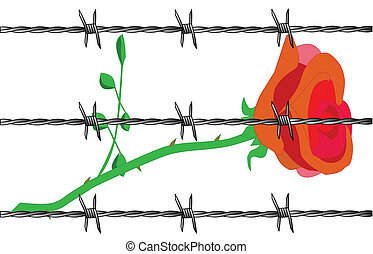 Rose - A cartoon rose set on a white background