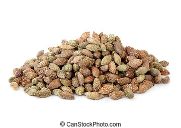 Xanthium Fruit - Xanthium fruit used in chinese herbal...