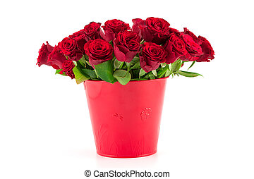bouquet of bright red roses in a red bucket on a white...