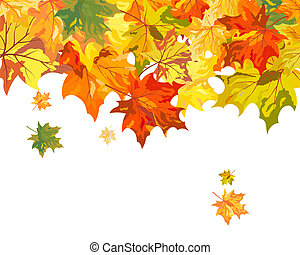 Maple background - Autumn maple leaves background Vector...